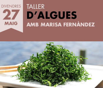 banner Taller d'algues